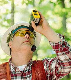 forest surveyor